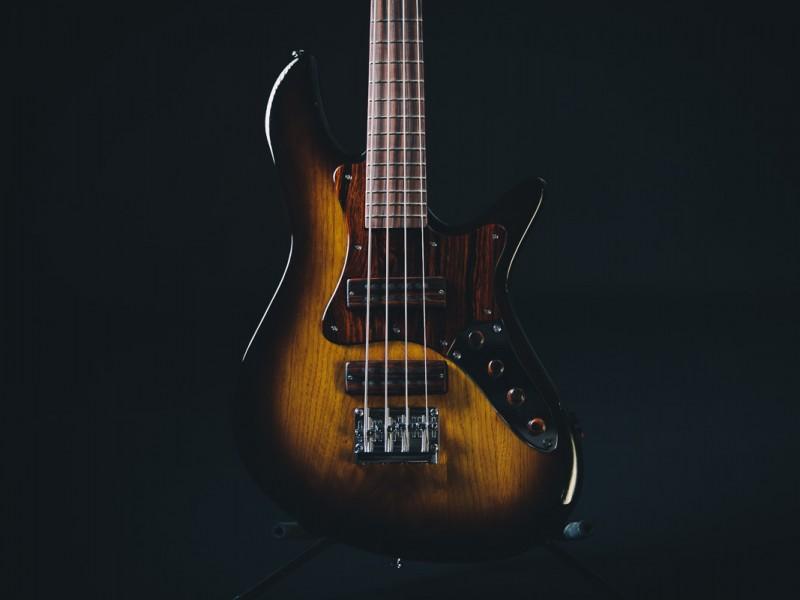 zg-guitar-bass-1
